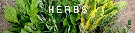 herb3