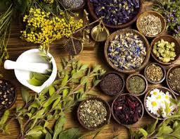 herbsforhealing